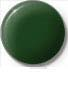 Forest Green Pigment